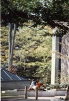 2092-800.jp2